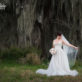 South Texas Bridals by Spanish moss