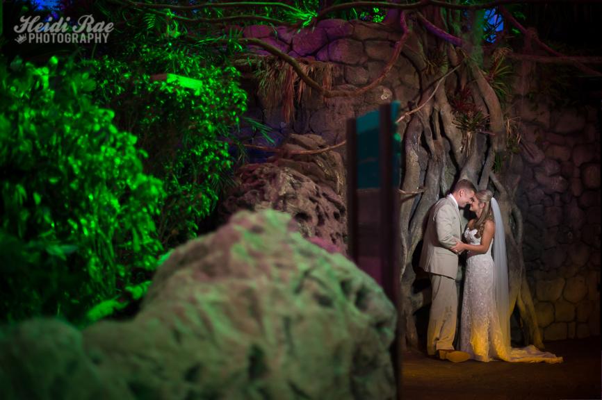 Bride and Groom photo in the Texas State Aquarium